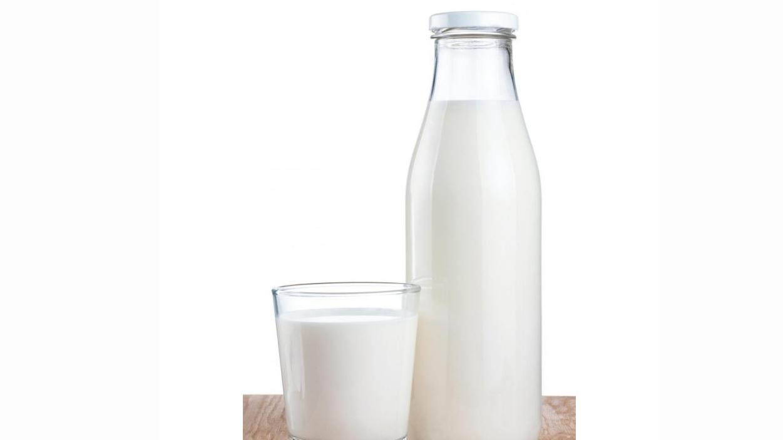 شیرگرم