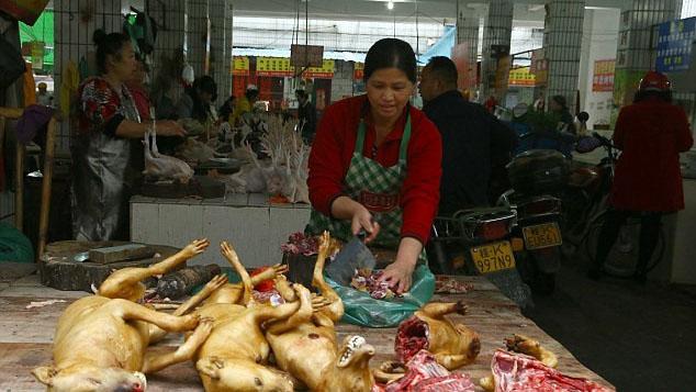 ممنوعیت فروش گوشت