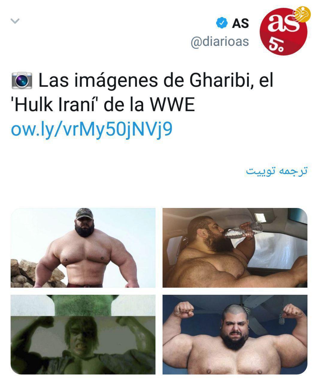 هالک ایرانی / سجاد غریبی