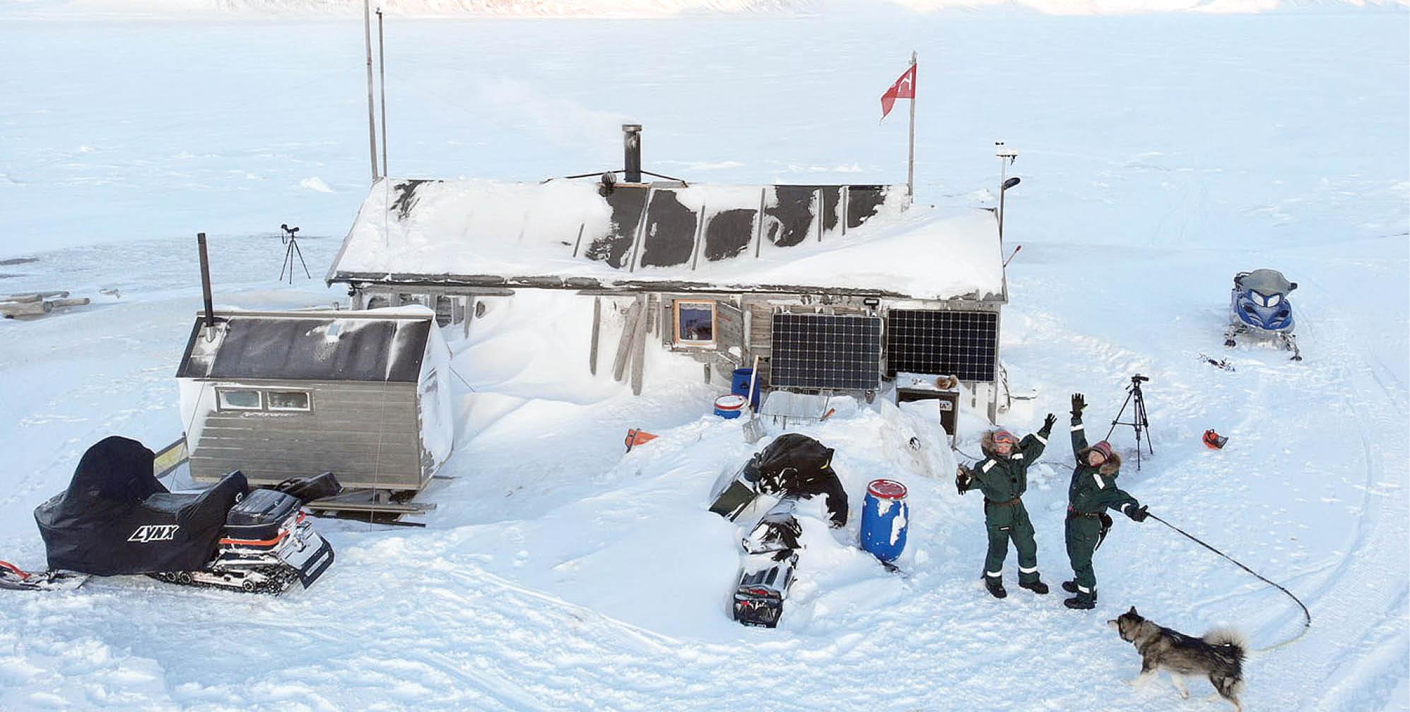 زندگی در قطب