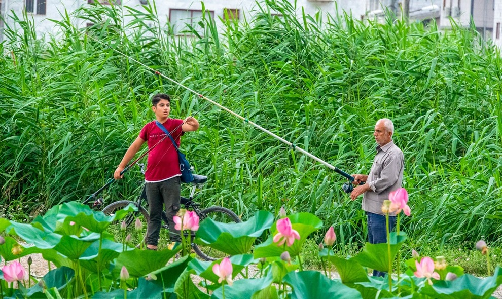 ماهیگیری در مازندران