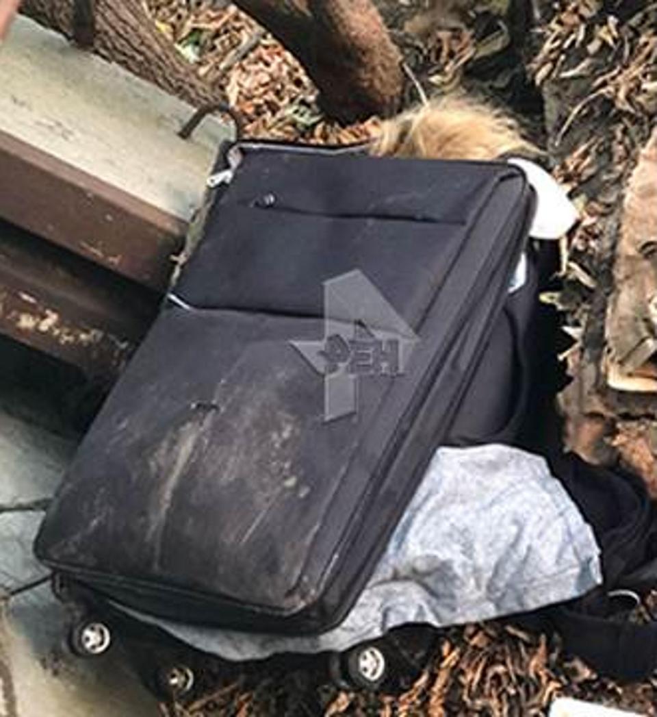 کشف جسد زنان برهنه درون چمدان