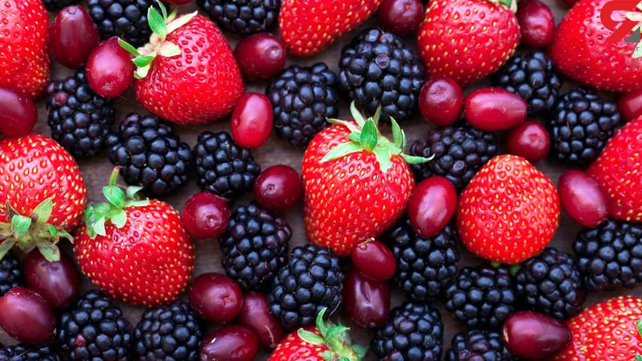 میوه ارزان قیمت را از کجا بخریم ؟