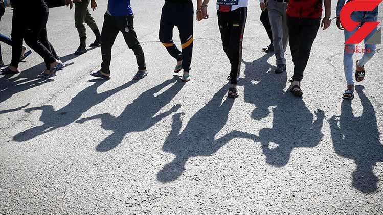 بازداشت ۲۰۶ سارق در ۱۵ روز نخست شهریور