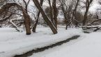 بارش برف در استان قزوین ادامه دارد/ احتمال مه و کولاک برای ارتفاعات استان