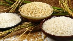 تاثیر مصرف برنج در بزرگ شدن شکم