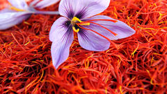 73 میلیون دلار زعفران طی 4 ماه صادر شد/ رشد 18 درصدی صادرات