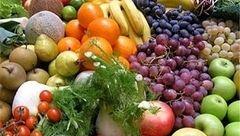 صادرات ۲۲ میلیون دلاری محصولات کشاورزی در سال گذشته