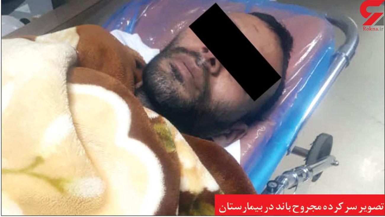 وحشت از قوی پنجه ها در مشهد / شلیک 3 گلوله برای آرامش +عکس