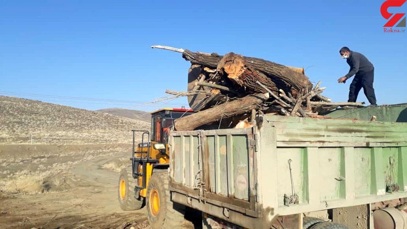 برخورد قانونی با عاملان قطع درختان واقع در اراضی ملی گلپایگان