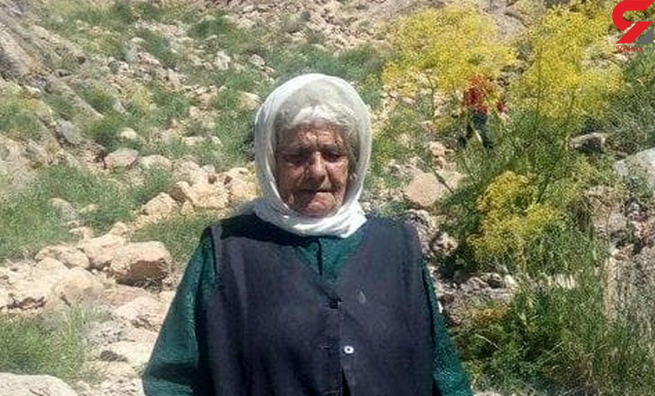مسن ترین زن کوهنورد ایرانی درگذشت + عکس