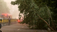 طوفان مشهد به تهران میرسد