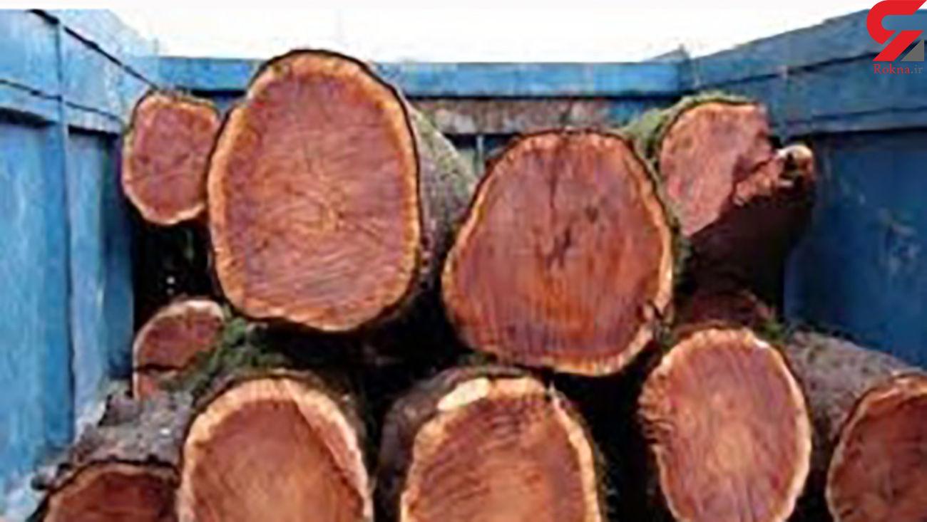 کشف 10 تن چوب قاچاق در دهگلان