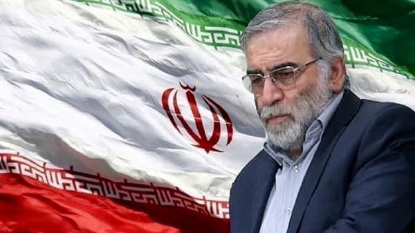 دروغ شرمانه علیه شهید محسن فخریزاده توسط یک نماینده مجلس+ عکس سند