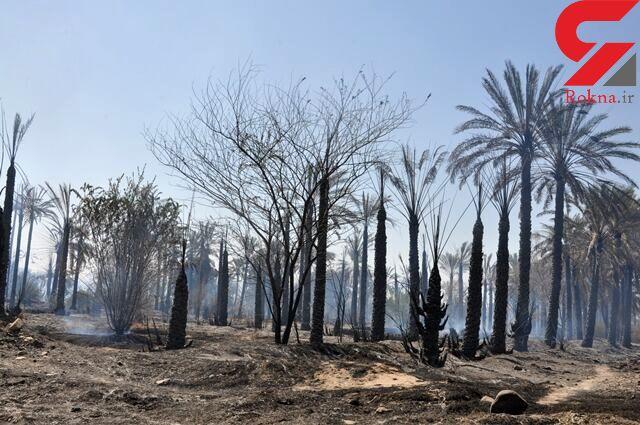 پنج هکتار از باغ های کهنوج کرمان در آتش سوخت