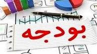 حاجی بابایی: بودجه را نسبت به گذشته شفاف تر و عملیاتیتر خواهیم کرد