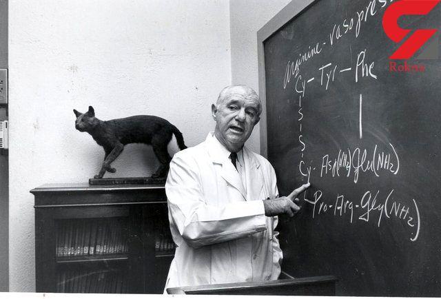 """امروز تولد دانشمندی است که """"هورمون عشق"""" را کشف کرد"""