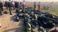 تاثیر سقوط هواپیمای اوکراینی بر شیوع افسردگی / کودکانی که مضطرب شدند