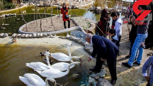 پشت پرده های فاجعه آمیز باغ پرندگان تهران + عکس