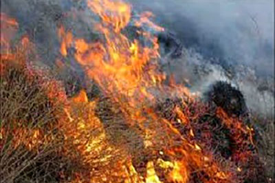 ۱۹۵۸ هکتار از مراتع استان مرکزی در آتش سوخت
