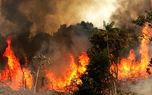 آتشسوزی جنگل زرین درخت خانمیرزا مهار شد / 3 هزار متر مربع خاکستر شد