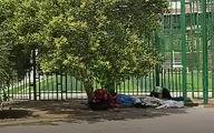 زنان کارتن خواب کرونایی، آواره کف خیابان / کسی از معتادان تست کرونا نمی گیرد! + فیلم