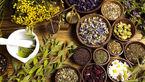 افزایش کشت گیاهان دارویی سازگار در اردبیل