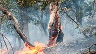 آتشسوزی کوه تلخالی کاکان بویراحمد مهار شد