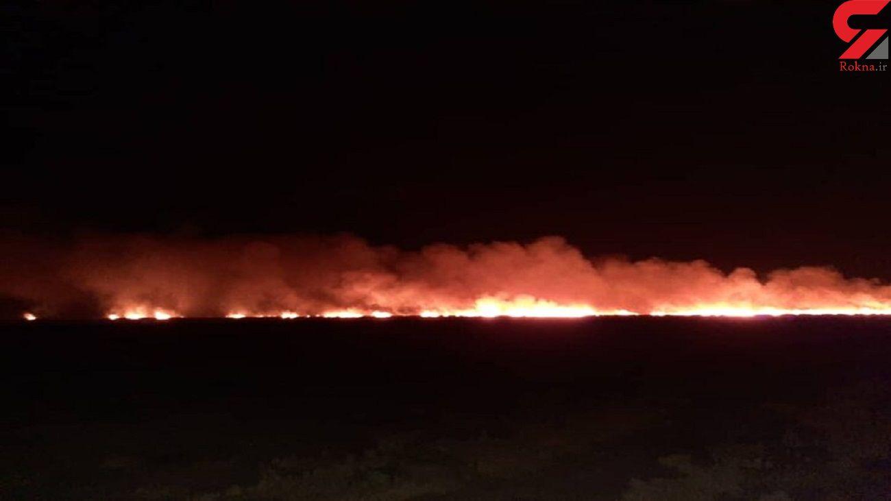 آتش سوزی جنگل ها بر اثر سهل انگاری در سوزاندن مزارع کشاورزی + عکس