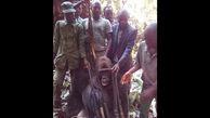 تصویر دلخراش از شکار یک گوریل نر در منطقه جنگلی / مردم خشمگین شدند+عکس