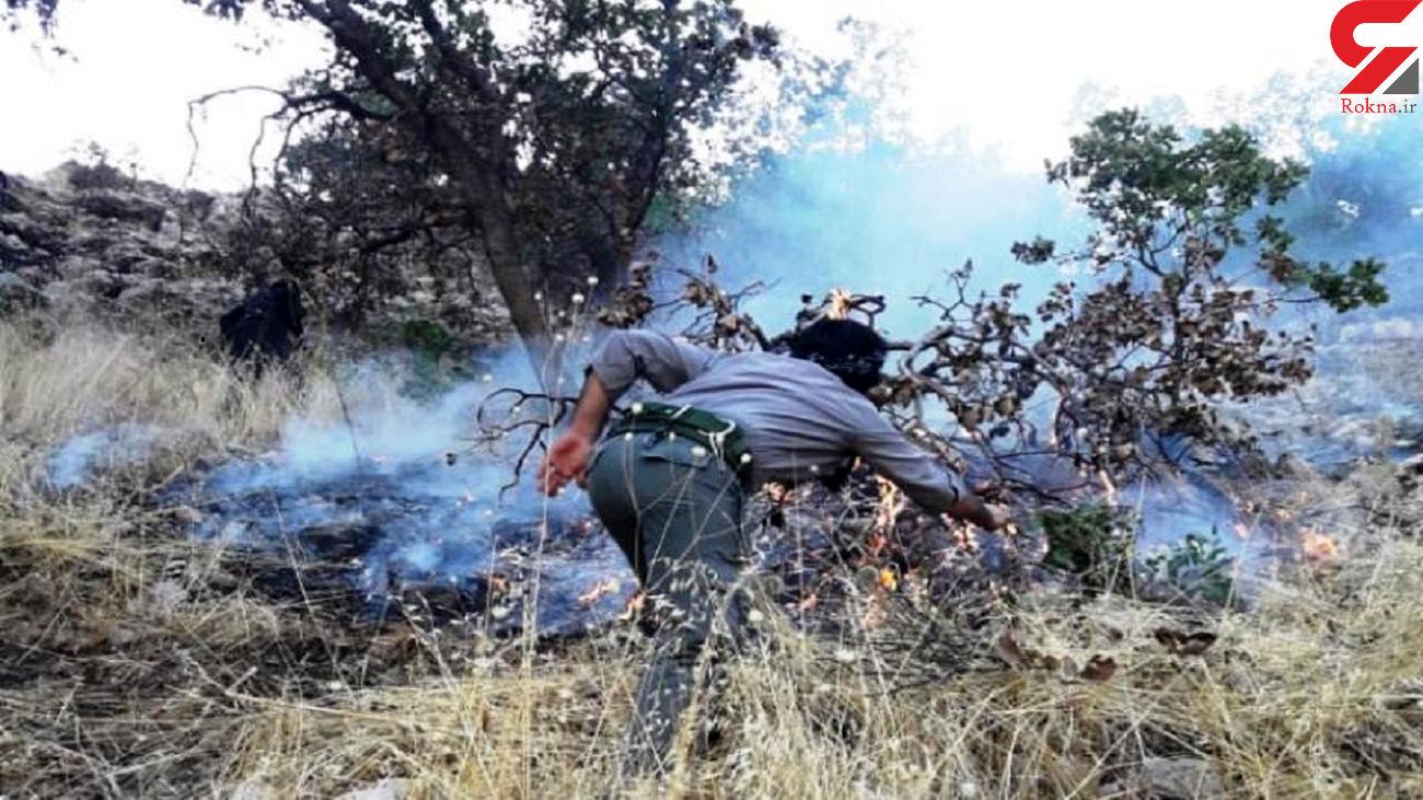 آتش سوزی در دلا خاتمه یافت