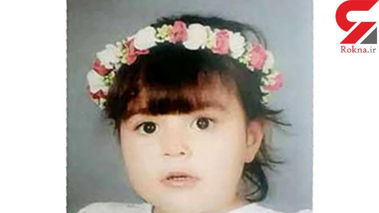 این دختر بچه ناز توسط یک زن معتاد ربوده شده است / او را دیده اید؟+ عکس