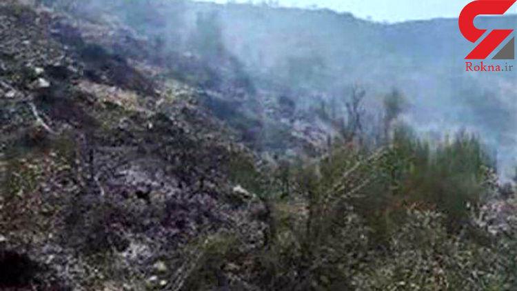 آتش سوزی 44 هکتار از جنگل های چهار محال بختیاری