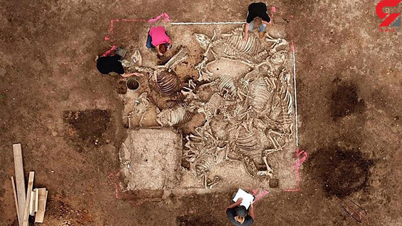این مرد با 6 همسرش به خاک سپرده شد / 1500 پیش چه اتفاقی افتاد + عکس / آلمان