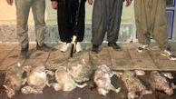 عکسی که دل هر ایرانی را تکان می دهد + جزئیات بازداشت مردان بی رحم در زنجان