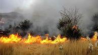 آتش در  انبار 3هزار تنی علوفه در ورامین