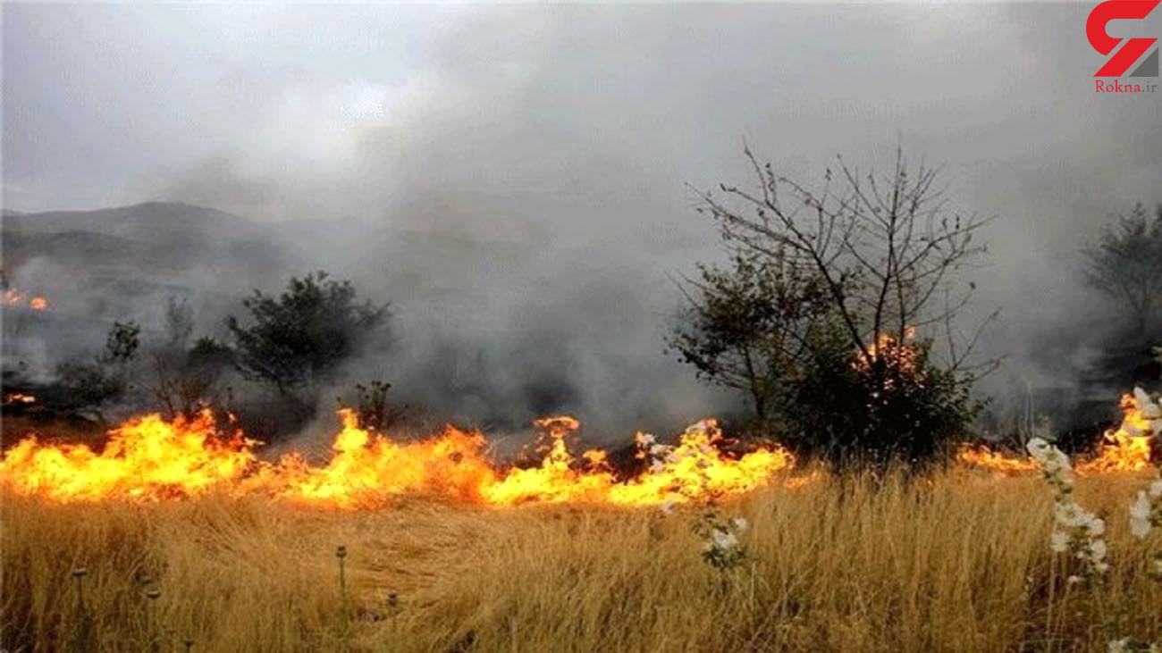 98 درصد از آتش سوزی کوه کَر مهار شده است