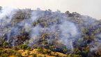 شکایت خانواده 3 فداکار محیط زیست از 3 سازمان / مرگ در دل آتش جنگل زاگرس
