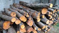 کشف و ضبط بیش از 2 تن چوب قاچاق در آباده
