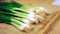 این سبزی را مهمان دائمی سفره تان قرار دهید
