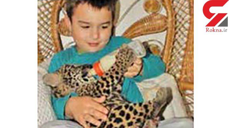 دوستی عجیب پسر 12 ساله با 35 حیوان وحشی + عکس