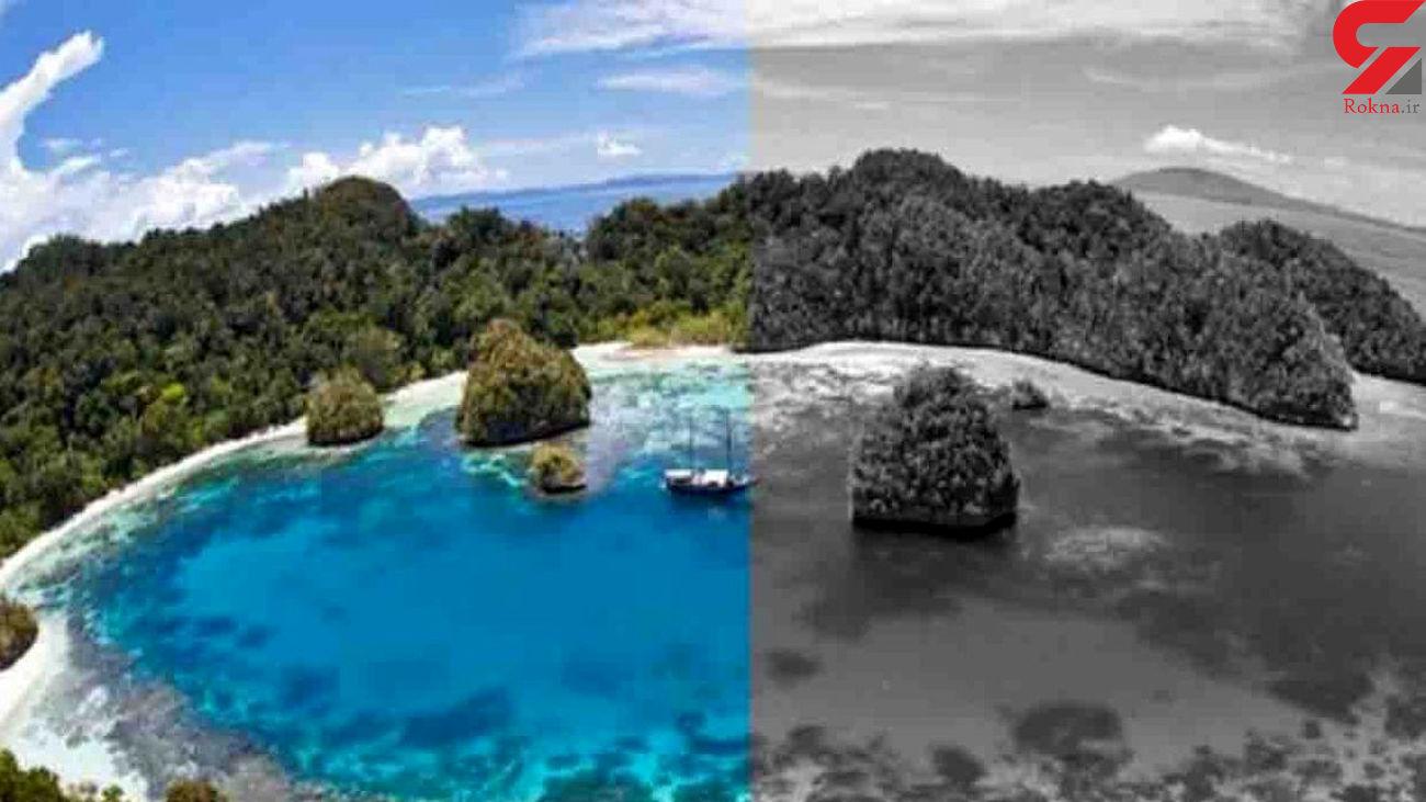 جزیره سیاه و سفید + عکس
