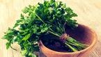 پیشگیری از سکته مغزی با یک سبزی معطر