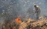 آتش سوزی منطقه له لار ایلام به طور کامل مهار شد