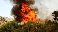 آتش سوزی در کوهدشت همچنان ادامه دارد