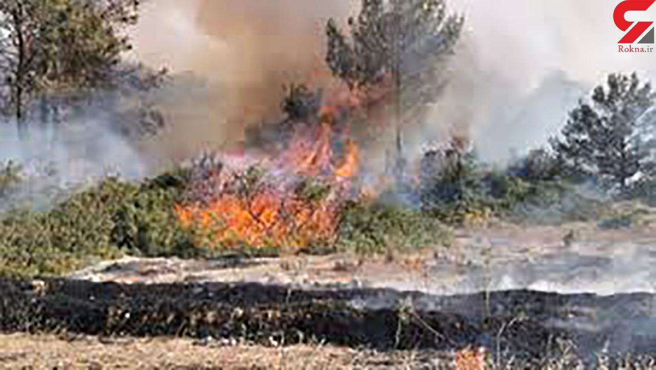 آتش سوزی مراتع استان همدان به یک سوم پارسال کاهش یافت