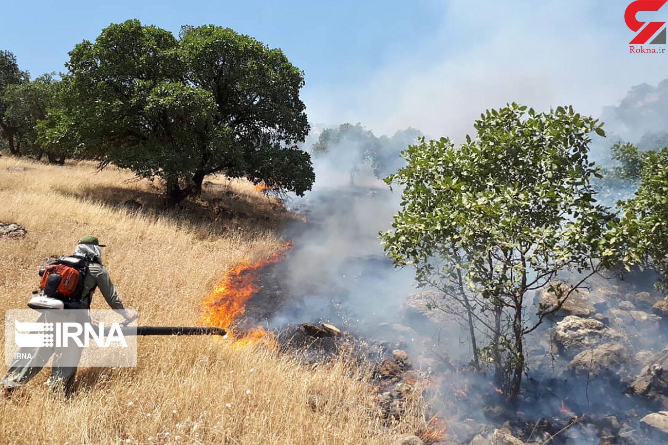 بازداشت عامل آتشسوزی عمدی میانکاله در مازندران
