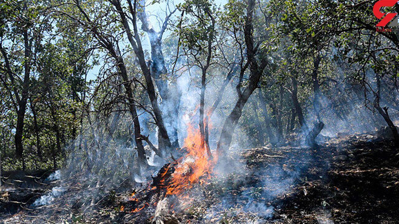 """شعله ور شدن سه باره آتش سوزی جنگلهای """"شرآبگروه"""" چرام"""