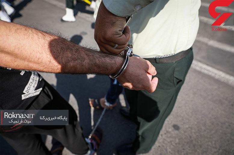 محموله افیونی به تهران نرسید / 246 کیلو حشیش در پایتخت کشف شد