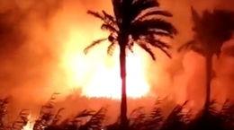 آتشسوزی در نخلستانهای 3 روستای آبادان+ فیلم